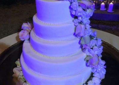 Wedding cake chef (13)