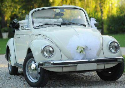 Car Rental (4)