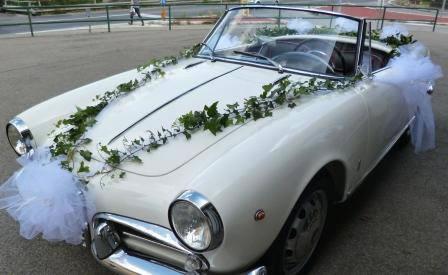 Car Rental (6)
